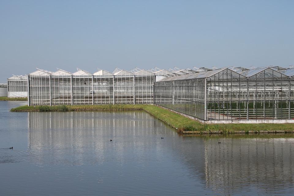 光伏温室农业大棚
